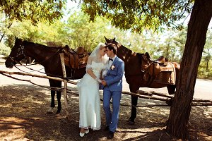Two horses and newlyweds