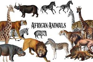 Vintage African Animals