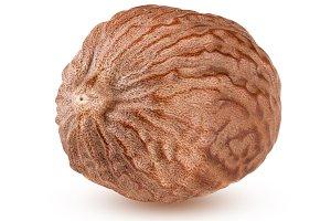 one nutmeg isolated on white background macro