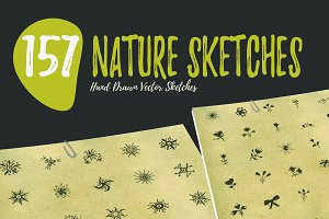 150+ Hand Drawn Nature Sketches