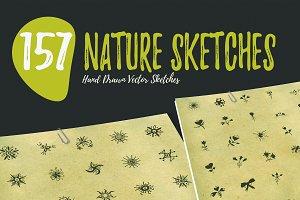 150+ Hand Drawn Nature Sketches