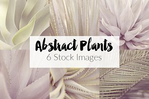 Abstract Plants ~ 6 Stock Photos
