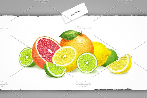 Citrus Collection in Illustrations - product preview 5