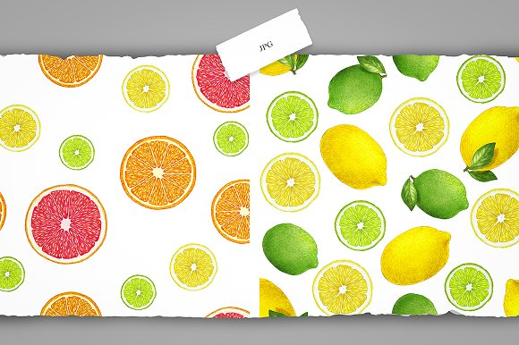 Citrus Collection in Illustrations - product preview 9