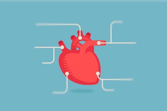 Heart Infographic Icon Set