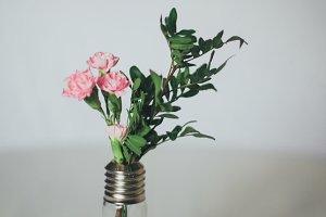 Flowers in Lightbulb Stock Photo