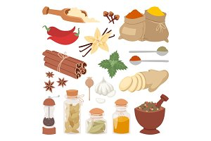 Seasoning food herbs natural vector ingredient.