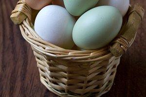 Farm colored eggs