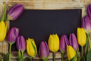 Purple and yellow tulips with blackboard