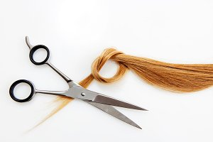 Hairdressing scissors with blonde hair. Isolated.
