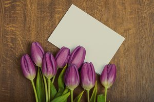 Purple tulip flowers and blank greeting card on wooden background