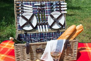 Picnic concept - food and wine on the blanket