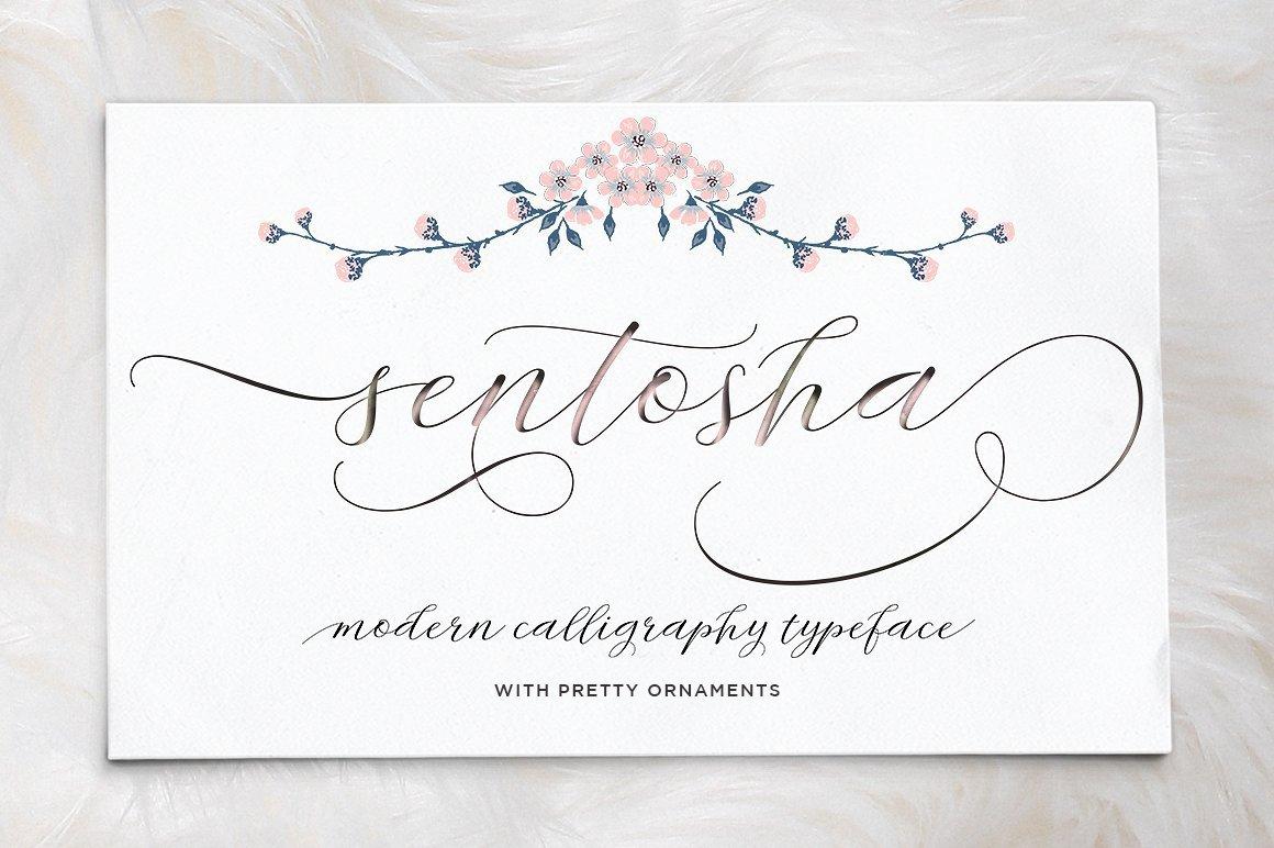 Sentosha Script Fonts Creative Market