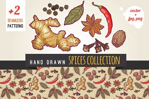 Hand drawn spices illustrations pack