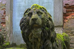 Moss-covered stone lion head.
