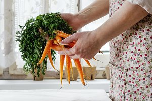 Fresh carrot in female hands