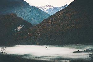 Mountains forest foggy Landscape