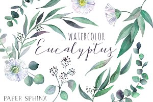 Watercolor Eucalyptus Leaf Pack