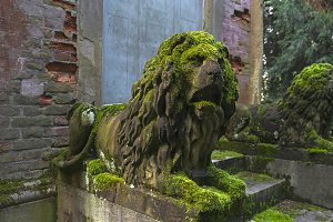 Moss-covered stone statue