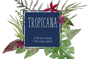 Tropicana Set Exotic Flowers