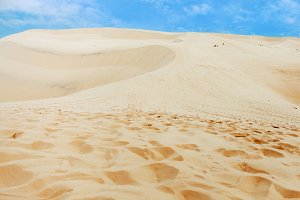 Loneliness in a desert