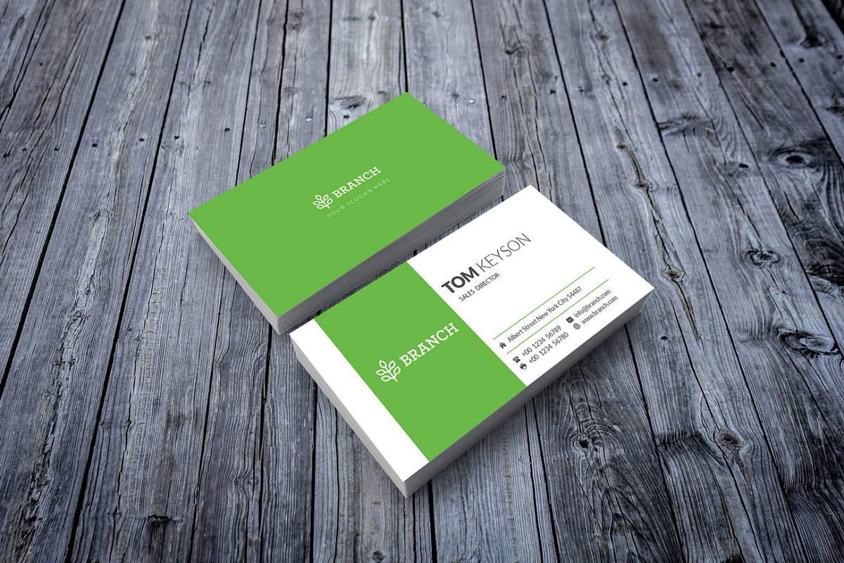 Business Card Template / 3 Color