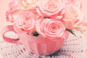 Pink roses in pink pot