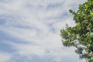 Sky Background frame