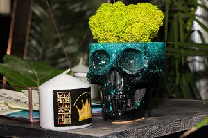 Flower vase in the form of a skull.