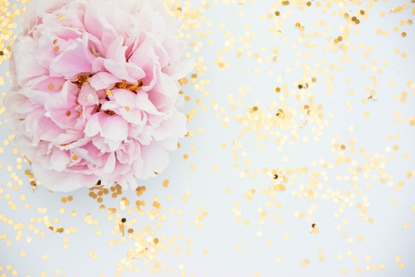Soft Pink Peony and Gold Photo