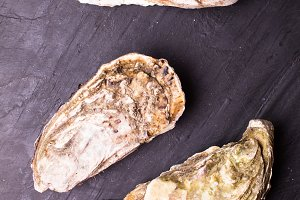 Oysters on slate