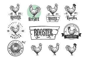 Rooster logotypes set
