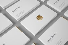 9 Business Card Mockup Professional