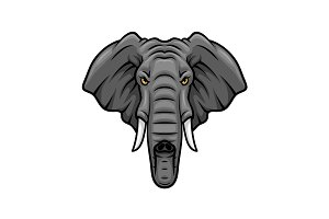 Elephant head, tusks and trunk vector mascot icon