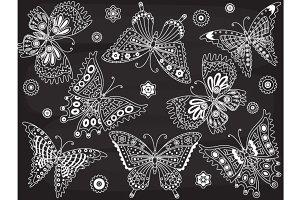 Vector Chalkboard Butterfly Set