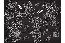 Vector Chalkboard Owls, Baby Owl