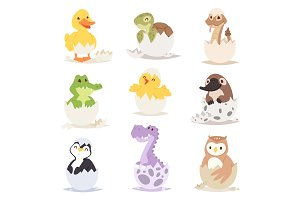 Cute new born animals in eggs easter farm holiday creature little life and young shell small pet nature birthday adorable wildlife poultry tiny character vector illustration.