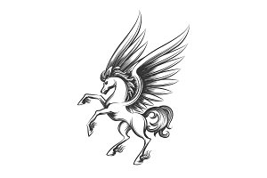 Winged horse engraving illustration