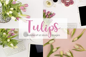 Tulips: Feminine Styled Stock Bundle