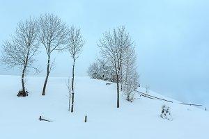 Winter Carpathians landscape.