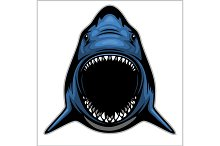Shark head isolated on white - emblem for a sport team.