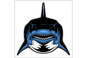 Shark head isolated on white - emblem for a sport team.