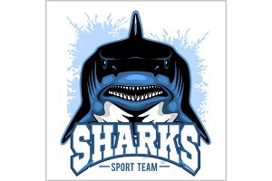 Strong shark sports mascot. Vector illustration.