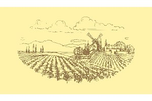 Vector hand drawn vineyard landscape.
