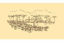 Vector hand drawn wine landscape.