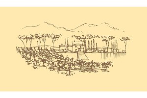 Vector hand drawn wine landscape.
