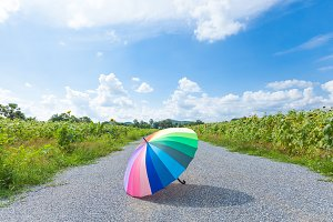 Multi-colored umbrella