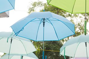 Umbrella variety of colors