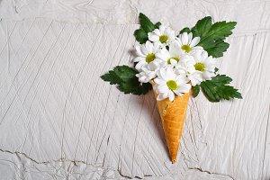 flowers  icecream cone