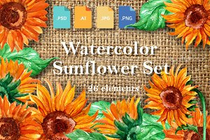Watercolor Sunflower Set.